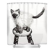 Pudsquiz Belina Shower Curtain