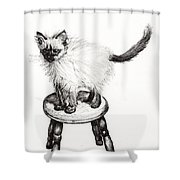 Pudsquiz Belina Shower Curtain