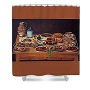 Puebla Kitchen Shower Curtain