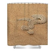 Puff Adder Snake Shower Curtain