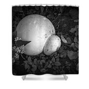 Puff The Magic Fungi Shower Curtain