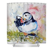 Puffin On Stone Shower Curtain