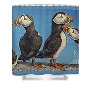 Puffin Palooza 1 Shower Curtain
