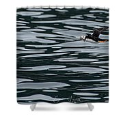 Puffin With Dinner Shower Curtain