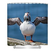 Puffin With Fish For Tea Shower Curtain