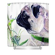 Pug And Nature Shower Curtain