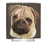 Pug Puppy  Shower Curtain