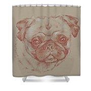 Pug Square Shower Curtain