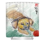 Puggle With Red Ball Shower Curtain