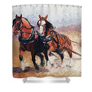 Pulling Contest Clydesdales Draft Horse Paintings Shower Curtain