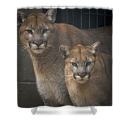 Puma Pair Shower Curtain