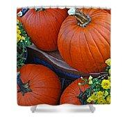 Pumpkin And Flowers Shower Curtain