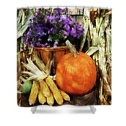 Pumpkin Corn And Asters Shower Curtain