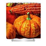 Pumpkin Corn Still Life Shower Curtain