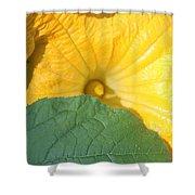 Pumpkin Flower Shower Curtain