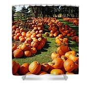 Pumpkin - Happy Thanksgiving Shower Curtain