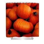 Pumpkin Harvest Shower Curtain