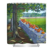 Pumpkin Muster Shower Curtain