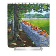 Pumpkin Muster Shower Curtain