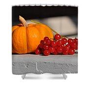 Pumpkin N Berries Shower Curtain