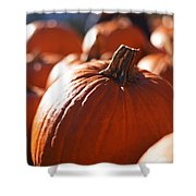 Pumpkin Patch Farm Shower Curtain