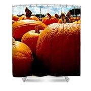 Pumpkin Patch Piles Shower Curtain