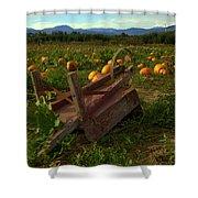Pumpkin Patch. Shower Curtain