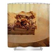 Pumpkin Pie With Walnuts Shower Curtain