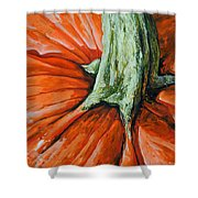 Pumpkin3 Shower Curtain