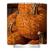 Pumpkins And Lace Shadows Shower Curtain