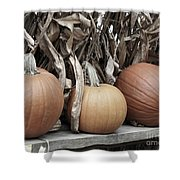Pumpkins For Sale Shower Curtain