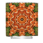 Pumpkins Galore Shower Curtain