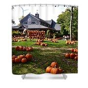 Pumpkins In Martha's Vineyard Farm Shower Curtain