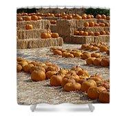 Pumpkins On Bales Shower Curtain