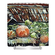 Pumpkins On Roof Shower Curtain