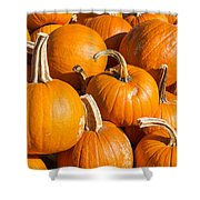Pumpkins Pile 1 Shower Curtain