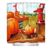 Pumps And Pumpkins Shower Curtain
