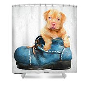 Pup In A Shoe Shower Curtain