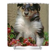 Pup In The Flowers Shower Curtain