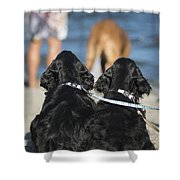 Puppies On The Beach Shower Curtain by Camilla Brattemark
