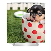 Puppy Cup Shower Curtain