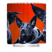 Puppy Dog Panoramic Montage Shower Curtain