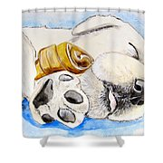 Puppy Dreams Shower Curtain