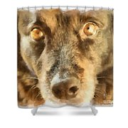 Puppy Eyes Shower Curtain