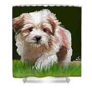 Puppy In High Grass Shower Curtain