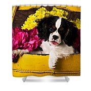 Puppy In Yellow Bucket  Shower Curtain