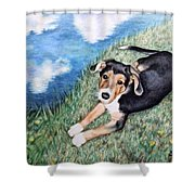 Puppy Max Shower Curtain