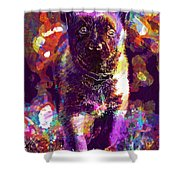 Puppy Sweet Cute Dog Young Animal  Shower Curtain