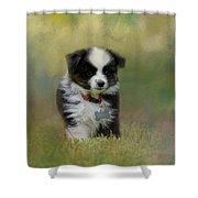 Puppyhood 1 Shower Curtain