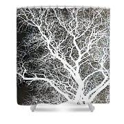 Pure Energy- Lightning Tree Shower Curtain